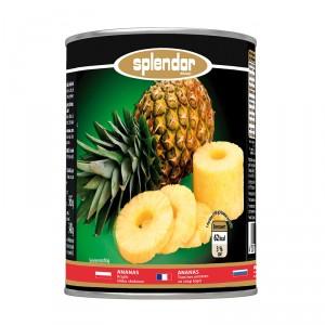 Splendor-Ananas-Plastry-580-A11